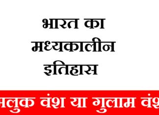 Delhi-saltanat-Ghulam Vansh