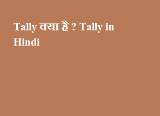 Tally क्या है - Tally in Hindi - Tally Software in Hindi - Tally ki jankari